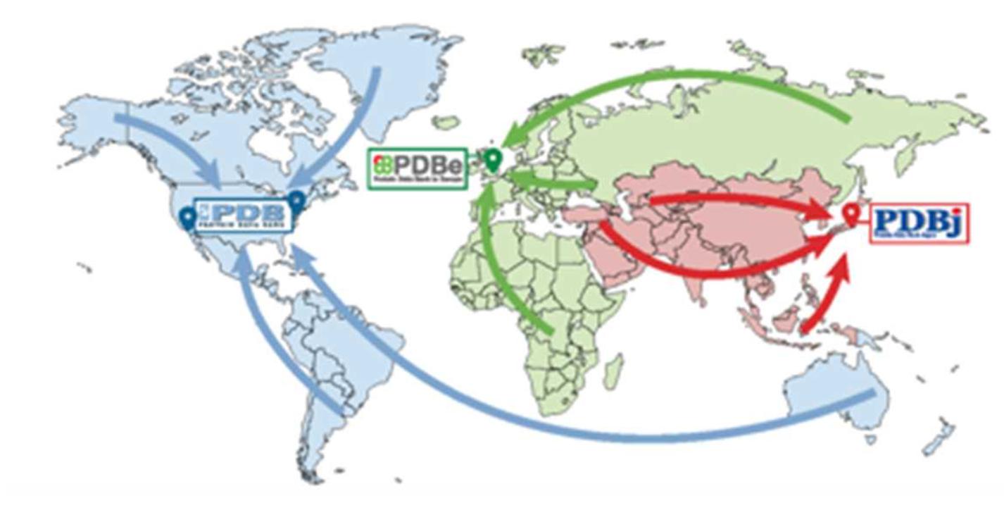 感染 ウイルス 世界 マップ 新型 コロナ